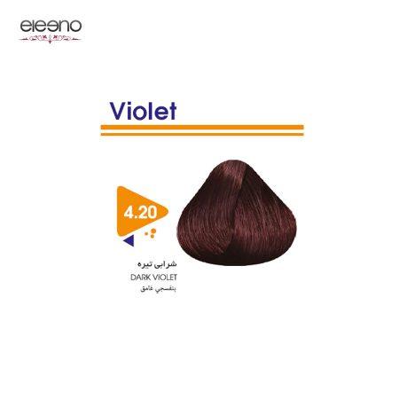 رنگ موی ویتامول شماره 20-4